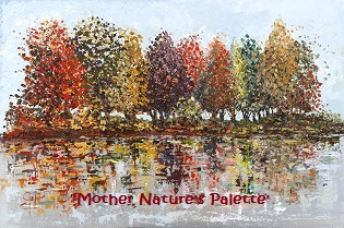'Mother Nature's Palette' – Framed Prints from £35 – £95 Collection Only Mounted Prints are available via post – from £45